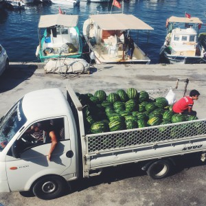 waterlemon truck